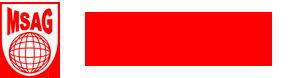 MSAG - Multinational Small Arms & Ammunition Group